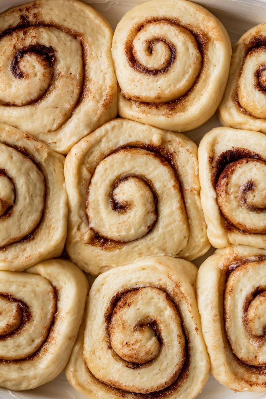 risen cinnamon rolls pre oven
